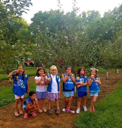 Girl scouts pick apple
